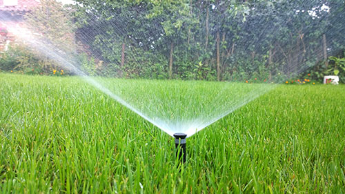Automatic Sprinklers Watering Green Lawn