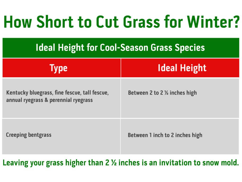 Ideal Length for Cool Season Lawn