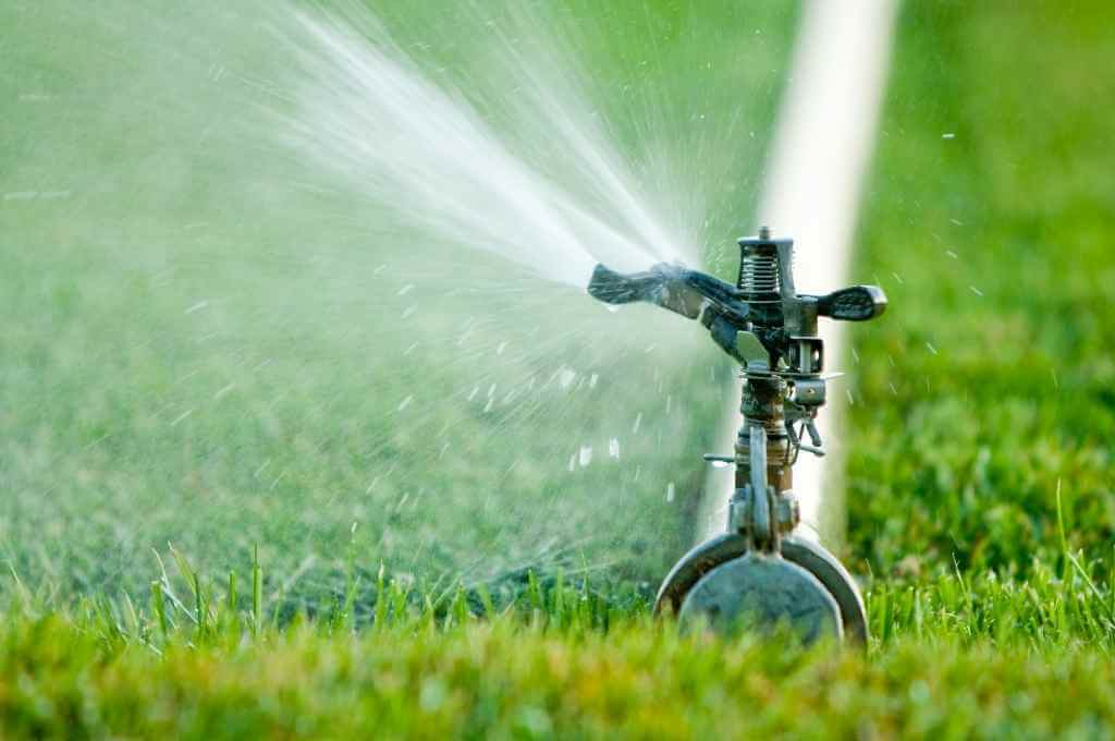 Impact Sprinkler Irrigating Lawn