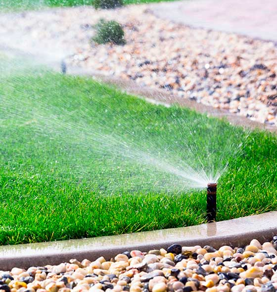 Automatic Sprinklers Watering Green Lawn