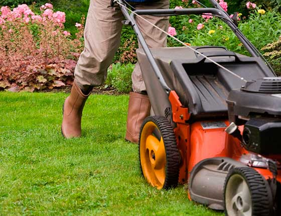 Landscaping Contractor in Kitsap County
