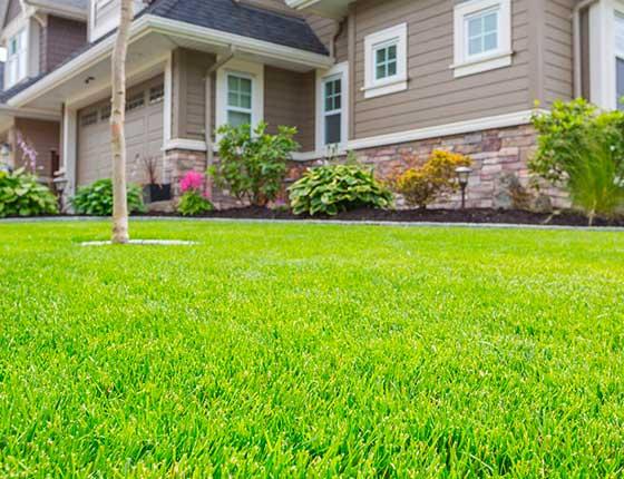 Lawn Care Services in Poulsbo, WA